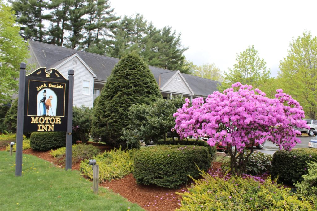 A blooming azalia bush sits right of a wooden sign with the words Jack Daniels Motor Inn. Behind it a grey hotel can be seen between bushes.