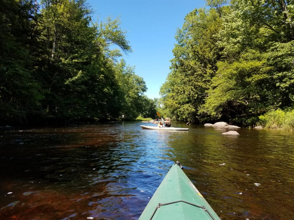 The tip of a kayak is visible at the bottom of the image on a river. Ahead is another person kayaking with green trees on each side.