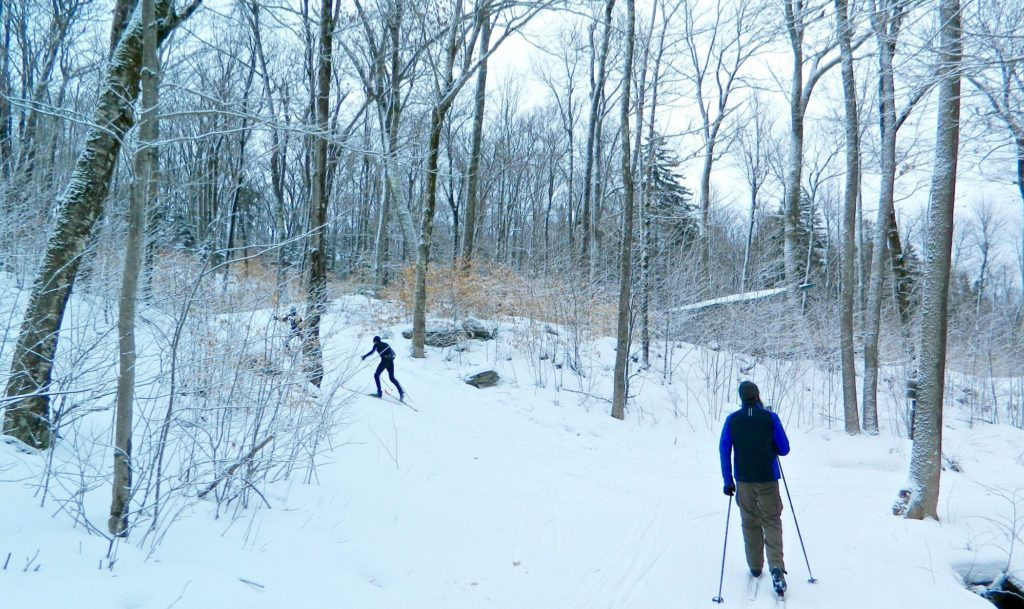 Two cross country skiers head up a snowy trail through the woods.