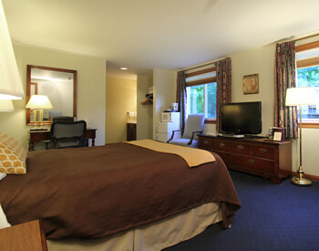 Spacious guest room with king bed topped with java-colored spread and gold throw