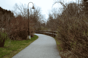 walking path curving to the left past bushes and the river