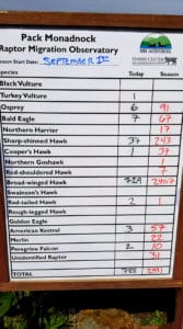 Tally board for daily and total hawk sightings